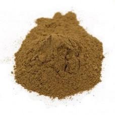Champignon Poeder Biologisch 100 gram